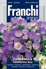 """Campanula Carpatica Blu """"Bell Flower"""""""