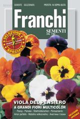 swiss Pansy - viola del pensiero mix grandi fiori