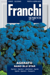 Agerato blue - Ageratum Alto azzurri