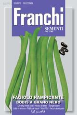 French Bean Bobis Nero Climber  (A) Phaseolus vulgaris L.