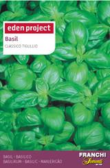 Basil 'Classico Tigullio' - Ocimum basilicum