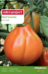 Beef Tomato 'Red Pear Franchi'(A) Solanum Lycopersicum L.