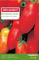 Plum Tomato San Marzano 'Scatolone Di Bolsena' (A) Solanum Lycopersicum L.