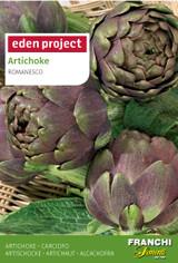 Artichoke 'Violet de Provence' - Cynara cardunculus var. scolymus