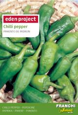 Chilli Pepper Pimiento de 'Padron' - Capsicum annuum