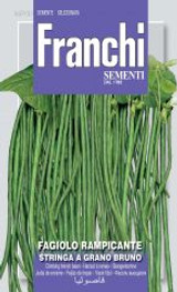 Stringa Bean UK Only (A) Phaseolus vulgaris L.