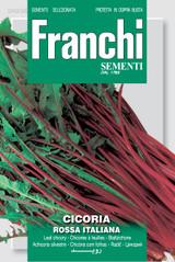 Chicory Rossa Italiana