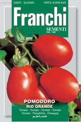 Tomato Rio Grande Toboga (A) Solanum Lycopersicum L.