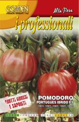 Tomato portugues F1 Professional Range (A) Solanum lycopersicum L.