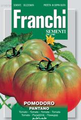 Tomato from Rome Pantano (A) Solanum Lycopersicum L.