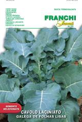 Portuguese Kale - Galega de Folhas Lisas