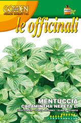 "Calamintha Nepeta or Roman ""mentuccia"""