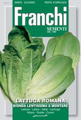 Romaine Lettuce Lentissima
