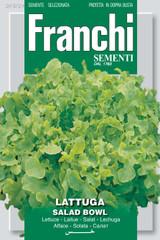 Lettuce Green Salad Bowl