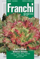 Lettuce Biscia Rossa