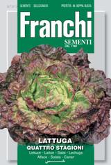 Lettuce Quattro Stagioni/Merveille De Quattre Saisons
