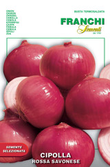 Red Onion Of Savona save 69p A) Allium cepa L.