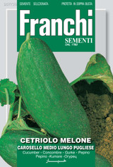 Cucumber Melon Carosello Pugliese - Endangered variety*