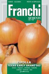 Onion Texas Grande (A) Allium cepa L.