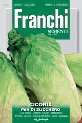 Chicory Pan Di Zucchero