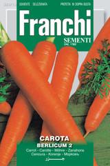 Carrot Berlicum