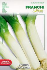 Leek Carentan  (A) Allium porrum L.