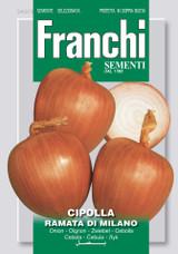 Onion Ramata Di Milano (A) Allium cepa L.