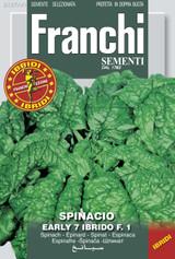 Spinach 7r F1