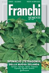 Tetragonia Perpetual Spinach