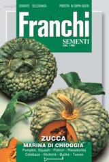 Pumpkin Marina Di Chioggia