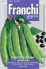 Dwarf Roma Bean Marconi (A) Phaseolus vulgaris L.