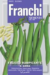Climbing French Bean St.Anna (A) Phaseolus vulgaris L.