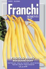 Dwarf Yellow French Bean Rocquencourt (A) Phaseolus vulgaris L.