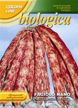 Organic Borlotto Bean (A) Phaseolus vulgaris L.