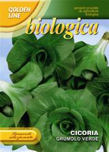 Organic Chicory Grumolo Verde
