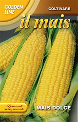 Sweetcorn Mais Box UK Only100g