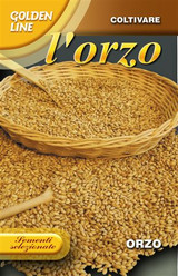 Barley - Orzo seeds for planting Golden Line