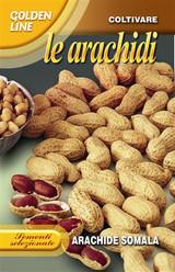 Peanut Somala