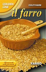"Farro - Spelt wheat ""Triticum spelta"""
