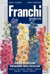 Delphinium perennial multicolor