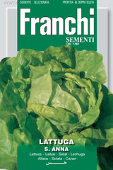 Lettuce S.Anna