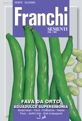 Broad Bean Packet (A)Vicia faba L.