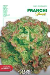 Lettuce Alpine Ciucca