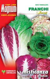 Mixed Cutting Radicchio's And Chicories Restaurateurs Pack 50g
