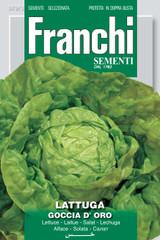 Lettuce Goccia D'Oro