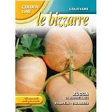"""Pumpkin """"Zucca Da Marmellata"""""""