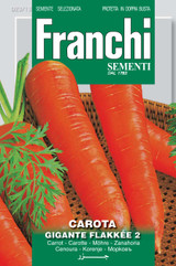 Carrot Flakkee Gigante
