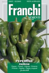 Padron Chilli Pepper - Pimento De Padron (A) Capsicum annuum L.