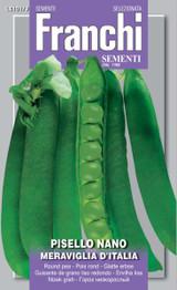 Dwarf Pea Meraviglia D'Italia Box (A) Pisum sativum L.