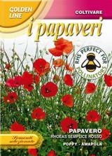 Poppy rhoeas semplice rosso